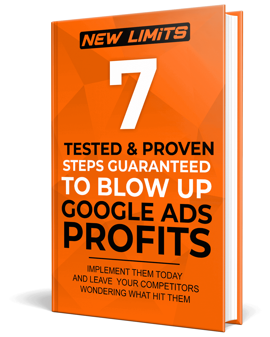 7 Tested & Proven Steps To Double Google Ads Profits - Waheed Dhedhi - New Limits